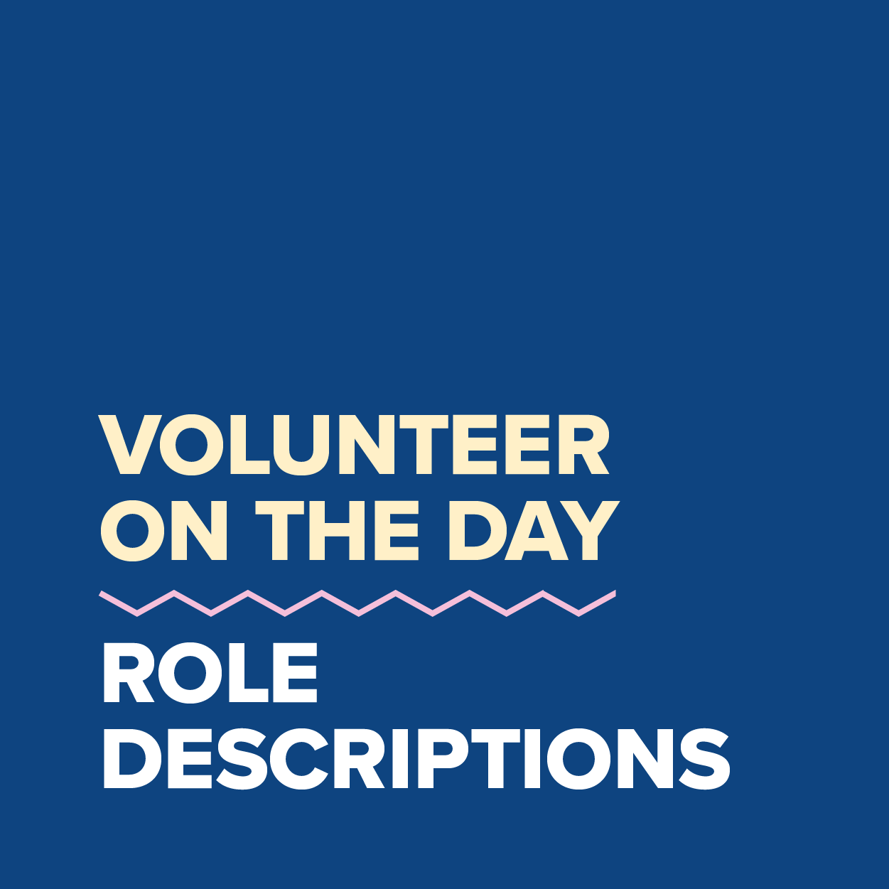 MDC2021_Volunteer On The Day Role Descriptions